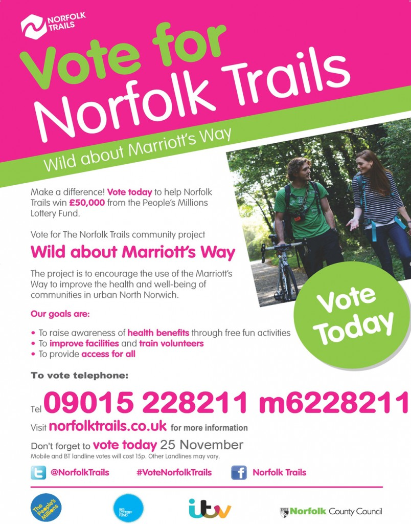 Vote for Norfolk Trails (On the Day) A3 Poster V2